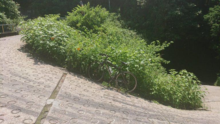 【サイクリング】日本最大級の勾配 生駒山の暗峠をのぼる