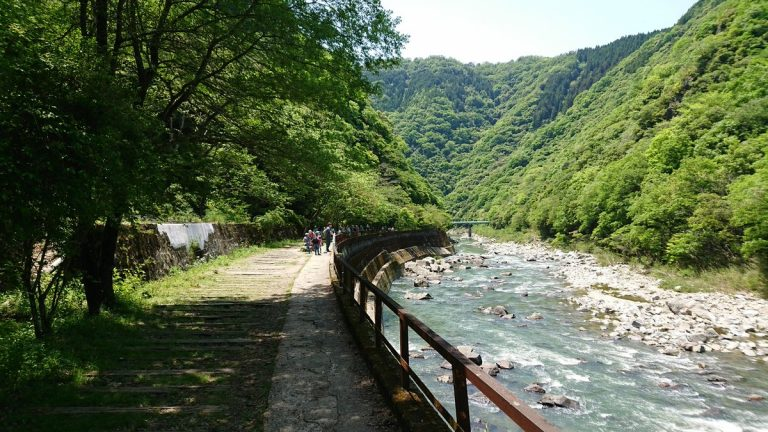 【ハイキング】JR武田尾駅から生瀬駅まで、武田尾廃線敷を歩く