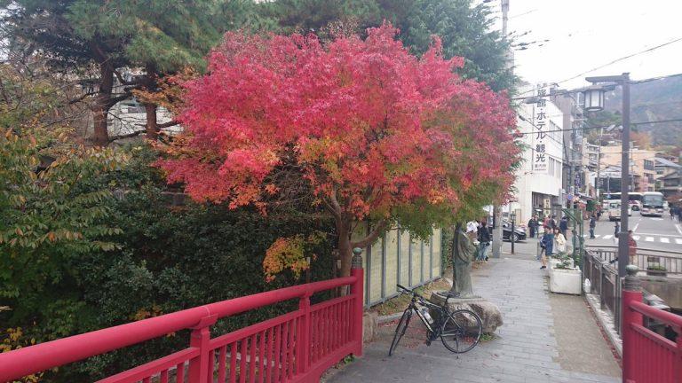 【サイクリング】秋の有馬温泉、瑞宝寺で紅葉観賞する